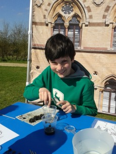 Dissecting owl pellets with us.