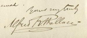 Wallace signature