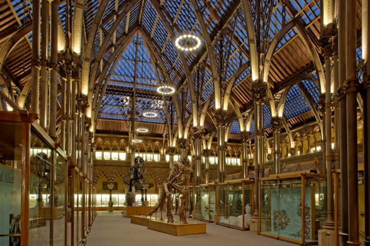 Natural History Museum Oxford-7 72dpi
