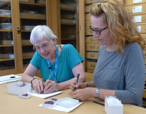 Monica Price (l) and Ina St George (r) are removing tiny samples from the mineral specimens, ready to analyse