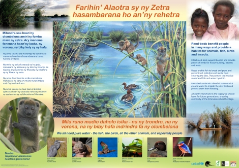 One of the posters designed by  McCrae Conservation and Education Fund