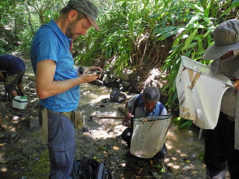 Werner Klotz, one of the co-authors of the study collecting a new species of freshwater shrimp in Taiwan.
