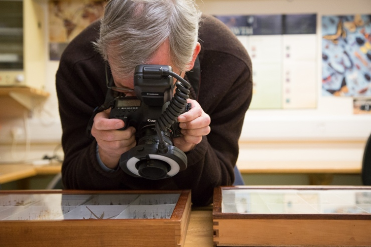 Martin Parr photographing some Darwin specimens in our collections