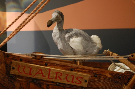 Squawk! I'm on the Walrus, a 14m Viking ship. It's the first stop on my tour and what a way to start!