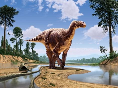 Iguanodon small