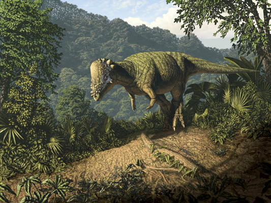 Pachycephalosaurus wyomingensis
