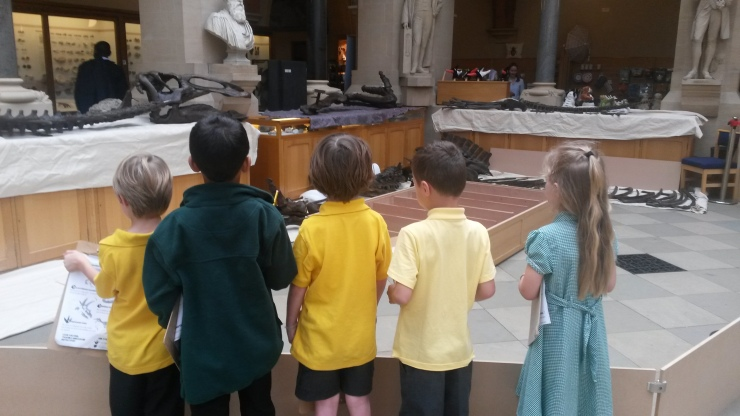 The Edmontosaurus bones attract attention from a visiting primary school.