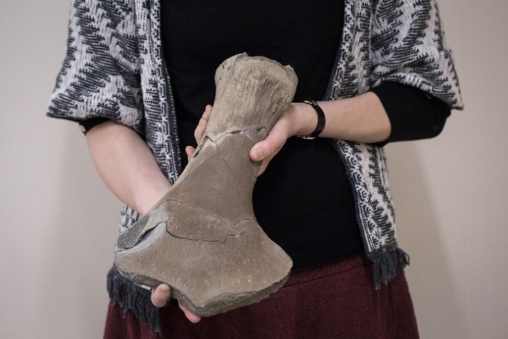 Hilary holds out the plesiosaur's arm bone (humerus)