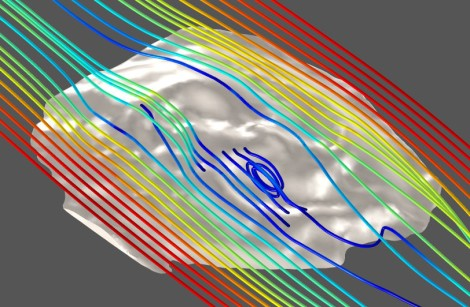 Computer simulation of water flow around a 3-D reconstruction of a 555-million-year-old fossil organism from Flinders Ranges, Australia (width of image = c. 30 mm). Source: Imran Rahman.