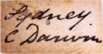 The handwriting on the specimen's label confirms that it was collected by Charles Darwin