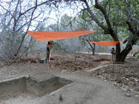 Primate archaeology excavation, Serra da Capivara National Park, Brazil. Photo by Michael Haslam