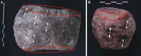 Examples of quartz anvils used by early hominins at Olduvai Gorge. Photo Credited to Mora and de la Torre, 2005.