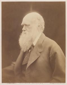 'Charles Darwin, Naturalist', 1868, Julia Margaret Cameron, The Royal Photographic Society Collection © National Media Museum, Bradford / SSPL. Creative Commons BY-NC-SA