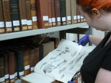 Lily Wilks, an intern assisting with the inventory of bound reprints. Image: Hannah Allum
