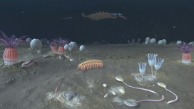 Digital reconstruction of a Cambrian ocean
