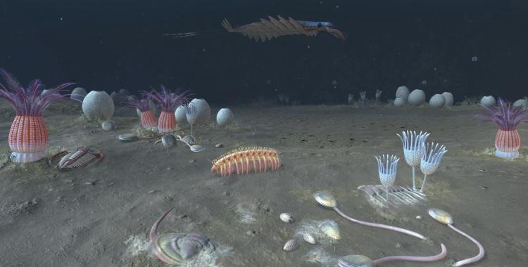 Digital reconstruction of a Cambrian ocean