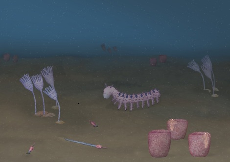 Abigail Harris - artwork showing reconstruction of Cambrian ocean animal life