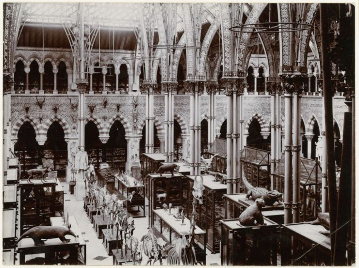 The Museum in 1890