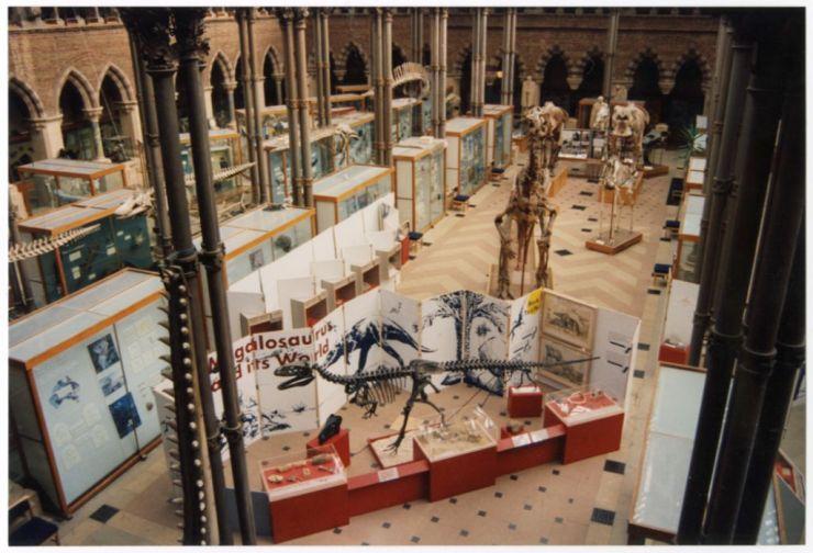 Megalosaurus temporary exhibition
