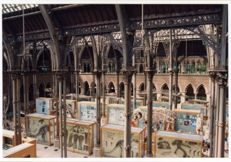 The Museum court in 1994