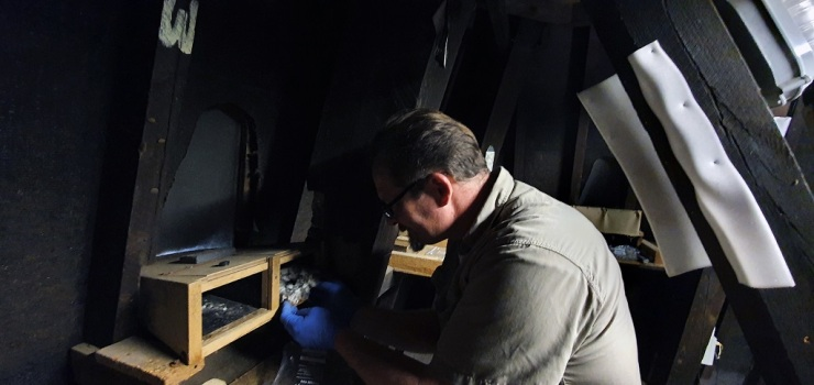 Chris Jarvis cleaning the nest box in the Museum Tower Room