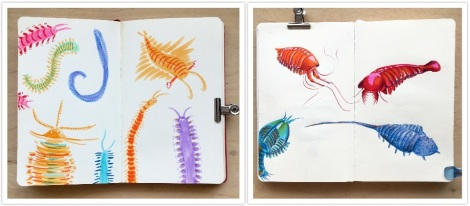 Two images of coloured drawings of extinct marine creatures side by side