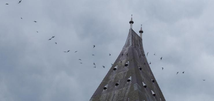 swifts flying around the museum tower against a cloudy sky