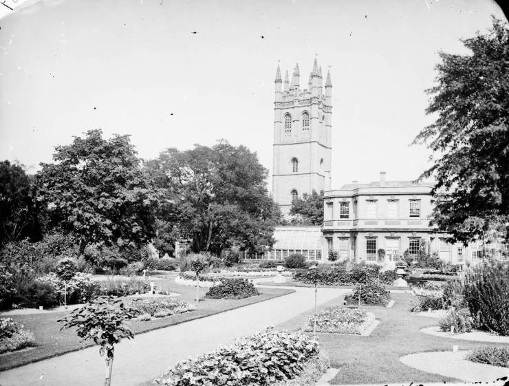 Black and white photograph of borders, paths, and trees with spired tower in background